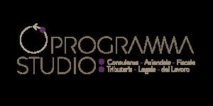 Programmastudio-LOGO-trasparente-2-e1423562261960